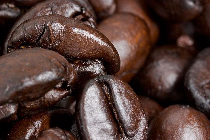 more_coffee_seeds.jpg